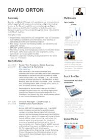 Senior Vice President Global Business Development Marketing Resume Example
