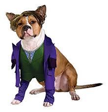 cat batman costume batman the joker pet costume medium
