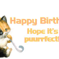 happy 50th fun kitty face sticker