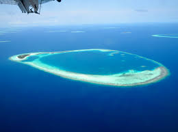 100 Rasdhoo Atoll Maldives Best Of The Central S 12 Nights Liveaboard Itineraries