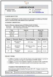 Information Technology Resume Samples Pdf Elegant Professional Curriculum Vitae Template For All Job Seekers