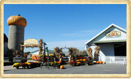 Northern Illinois Pumpkin Patches by Goebbert U0027s Pumpkin Patch Farm And Family Center