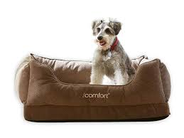 Boots And Barkley Dog Bed by Must Have Registry Picks For Dog Lovers