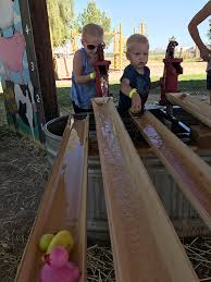 Pumpkin Patch Power Rd Mesa Az by 6 Reasons To Visit Vertuccio Farms This Fall Things To Do In