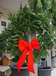Christmas Tree Shops Lancaster Pa by Shady Willow Greenhouse Lancaster Pa Plants Flowers Lancaster County