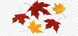 Autumn leaf color Clip art Fall Leaves PNG Clipart