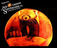 Roger Williams Pumpkin by Rwp Zoo Rwpzoo Twitter