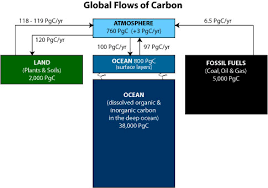 Define The Word Carbon Sink by Carbon Cycle Science Mission Directorate