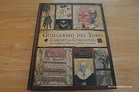 cabinet of curiosities my notebooks collections and other