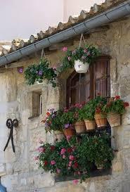Flowers Arles France Audreylovesparistumblr