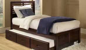 Day Beds At Big Lots by Trunk Bike Racks Ems Home Bedding Decoration