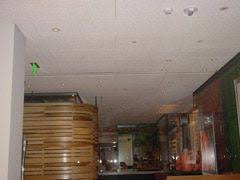 Tectum Lay In Ceiling Panels by 47 Best Ceiling Panels Images On Pinterest Ceiling Panels