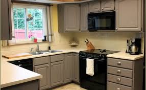 cabinet beautiful rustoleum cabinet transformations colors ideas