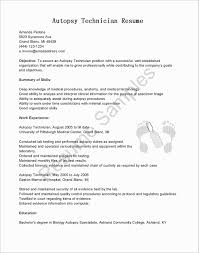 How Long Should A Resume Be - Koman.mouldings.co How Long Should A Resume Be Ideal Length For 2019 Tips Upload My To Job Sites Impressive 12 An Executive Letter The History Of Many Pages Information High School Students Best Luxury Rumes And Other Formatting What On A Cover Emelinespace Does Have To One Page Now Endowed Is Template Term Employment Federal 9 Search That