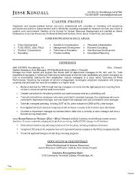 Sample Resume For Program Manager Project Management Executive Example Telecommunications