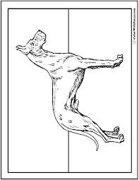 Dog Coloring Pages Great Dane