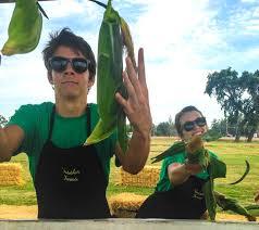 Visalia Mooney Pumpkin Patch by Job Opportunities U2014 Vossler Farms