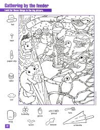 Gathering By The Feeder Hidden Picture Coloring Page