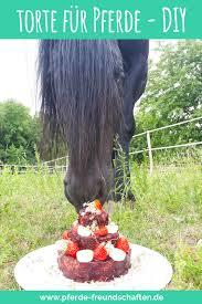 dein pferd hat geburtstag und du möchtest ihm an diesem tag