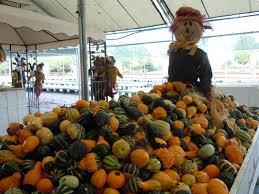 Pumpkin Patch In Homer Glen Illinois by 16 Pumpkin Patch In Homer Glen Illinois 100 Rockefeller