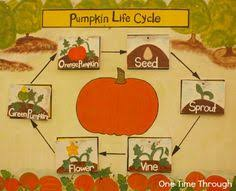 Pumpkin Patch Wetumpka Alabama by Welcome To Down On The Farm Rainsville Al Pre K Field Trips