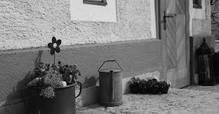 bergfex bauernhof steinerhof bauernhof kuchl kuchl
