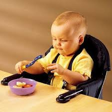 Booster Seat For Toddlers When Eating by 37 Best Toddler Booster Seat For Eating Images On Pinterest