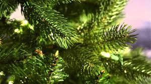 Dunhill Artificial Christmas Trees Uk by National Tree Bayberry Spruce 7 Ft Pre Lit Youtube