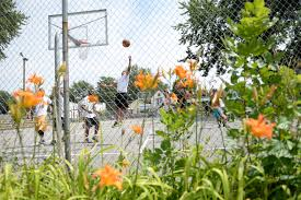 Ymca Sinking Spring Jobs by Community Schenectady Cops Meet On The Courts The Daily Gazette