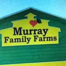 Pumpkin Patches Near Bakersfield Ca by Murray Family Farms 350 Photos U0026 173 Reviews Farmers Market