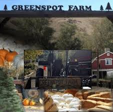 Pumpkin Patch With Petting Zoo Inland Empire by Greenspot Farms Mentone Ca Greenspot Farms Serving The Inland Empire