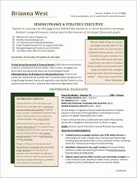 Monstercomrhmonstercom Sample Executive Resume Examples 2016 For An Advertising Account Templates Sales Samples Corporate Manager
