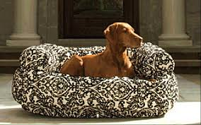 bowsers dog beds bowsers pet products free shipping over 49