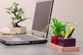 plantes pour bureau nos conseils pour un bien être au bureau concept bureau