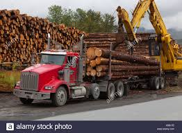 Logging Truck Stock Photos & Logging Truck Stock Images - Page 3 - Alamy Logging Truck Stock Photos Images Page 3 Alamy Rotobec Crane Grapple Loader Knuckleboom Used Trucks Second Hand For Sale Uk Walker Movements New And Commercial Dealer Lynch Center Moving Big Wood The Buzzboard Kenworth W900 Self Log Custom Toys Sale Cc Heavy Equipment What You Dont Know About The Truck Driver Just Flipped Off On Cmialucktradercom Cranes Palfinger T800 Version 290117 Mod Farming Simulator 17 Mini Suppliers Manufacturers At