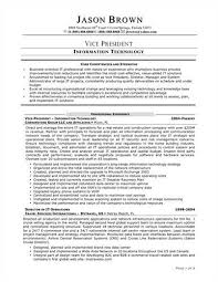 Top Information Technology Consultant Resume Samples Oyulaw A Curriculum Vitae