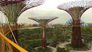 Singapore s Gardens By The Bay