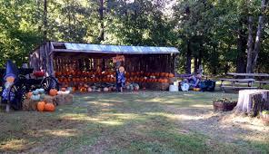 Pumpkin Patch Fayetteville Arkansas by Ranalli Farms Pumpkin Patch Ranalli Farms