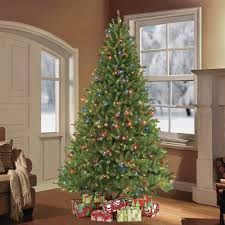 Puleo International 75 Ft Fraser Fir Artificial Christmas Tree With 750 Clear Multi Colored LED UL Listed Lights