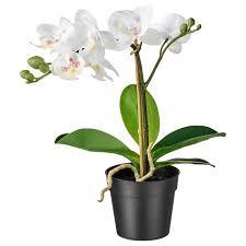 fejka topfpflanze künstlich orchidee weiß 9 cm