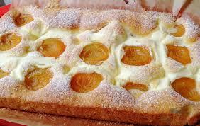 ungarischer quark aprikosen kuchen