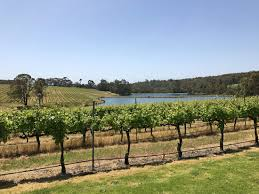 100 Luxury Accommodation Yallingup 10 Unmissable Vineyards Wineries To Visit In The Margaret