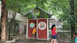 Big Ang Mural Forest Ave by The Top 10 Things To Do Near Thunderbird Resorts Rizal Binangonan