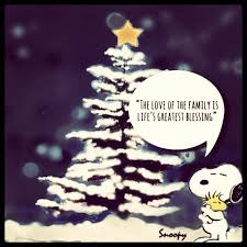 Charlie Brown Christmas Tree Quotes by 186 Best Inspirational Quotes Images On Pinterest Beautiful
