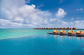 100 Maldives Infinity Pool Breeze Side Dining Bar Casual Dining In