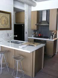 Small Kitchen Designs With Island Small Kitchen Island Ideas Houzz