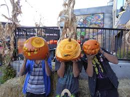 Pumpkin Patch Littleton Co by 21 Unique Things To Do This In Denver This Weekend 303 Magazine