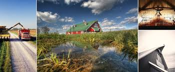 Directions To Hartsburg Pumpkin Festival by Shryocks Callaway Farms Corn Maze Outside Columbia Missouri
