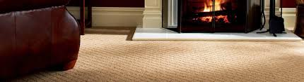 Carpet Steam Cleaning Adelaide | Commercial Carpet Cleaners