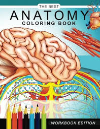 Stylish Inspiration Best Anatomy Coloring Book Emejing Contemporary